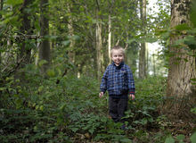 Little boy. Little young boy in the forest, october Royalty Free Stock Images