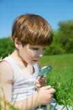 Little Boy adorable que mira el vidrio de Daisy Carefully Through The Magnifying en prado verde en Sunny Spring Day fotos de archivo