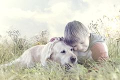Little boy affectionately hugs his dog in the middle of nature. Sweet little boy affectionately hugs his dog in the middle of nature Royalty Free Stock Images