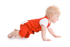 Little boy at the age of 7 months Stock Image