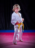 Little boy aikido fighter Royalty Free Stock Photo