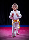 Little boy aikido fighter Stock Photography