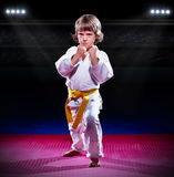 Little boy aikido fighter Stock Photo