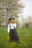 Little boy in an apple garden Royalty Free Stock Photo