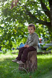 Little boy in an apple garden Stock Photography