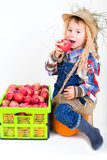 Little boy with apple harvest Royalty Free Stock Photography