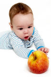 Little boy with an apple on a light background Stock Photos