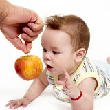 Little boy with an apple on a light background Royalty Free Stock Images