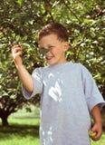 Little boy and apple tree stock photo