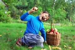 Little boy with apples Stock Image