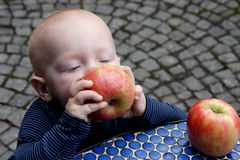 Little boy and apples stock image