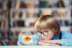 Little boy with aquarium Stock Images