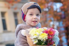 A little boy with autumn bouquet on a background Stock Image
