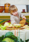 Little boy and autumn cabbage harvest Royalty Free Stock Photo