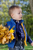 Little boy with autumn leaves Stock Photo