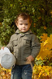 Little boy in an autumn park royalty free stock images