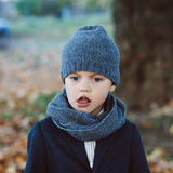 Little boy in autumn park Royalty Free Stock Photography