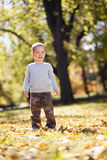 Little boy at the autumn park stock photo