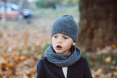 Little boy in autumn park Royalty Free Stock Images