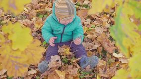 Little boy playing with autumn leaves in autumn park slow motion stock footage