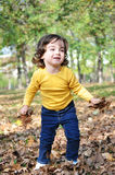 Little boy in autumn park Stock Images