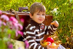 Little boy in autumn park with a suitcase and apples Royalty Free Stock Photo