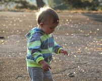 Little boy on the autumn sun. A little boy is playing a boy in an autumn sun royalty free stock photography