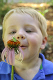 Little boy looking at insect. Little boy looking in awe at an insect on a coneflower royalty free stock photos