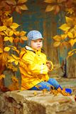 Little boy on background of autumn park. Child with a maple leaf Royalty Free Stock Images
