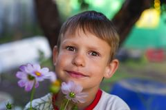 Little boy on the background of flowers. The little boy on the background of flowers royalty free stock photo
