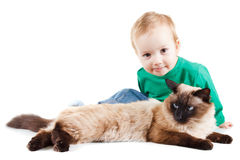 Little boy with balinese cat isolated on white Stock Images