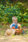 Little boy with a basket of apples in the park Stock Photos