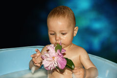 Little boy in bath with flower in hand. royalty free stock image