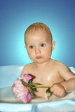 Little boy in bath with flower in hand. Royalty Free Stock Photo