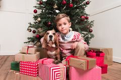 Boy with dog under christmas tree. Little boy with beagle dog sitting under christmas tree with gifts Stock Photo