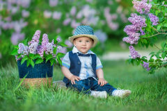 Little boy on the beautiful green lawn with lilac. Image with selective focus Stock Photos