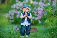Little boy on the beautiful green lawn with lilac. Image with selective focus Stock Images