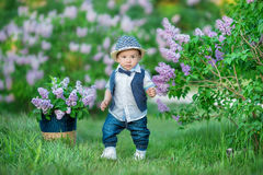 Little boy on the beautiful green lawn with lilac. Image with selective focus Royalty Free Stock Image