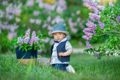 Little boy on the beautiful green lawn with lilac. Image with selective focus Royalty Free Stock Images