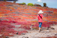 Little boy at beautiful outdoor setting Royalty Free Stock Image