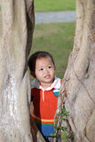 Little boy behind the tree Royalty Free Stock Photo