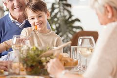 Little boy being fed. Little happy boy being fed at the family dinner royalty free stock image