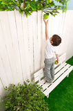 Little boy on a bench in the garden royalty free stock photography