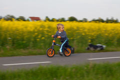 Little boy on a bicycle. Stock Image