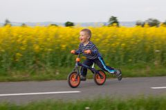 Little boy on a bicycle. Royalty Free Stock Photo