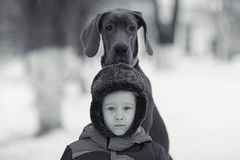 Little boy with  big black dog Stock Photography