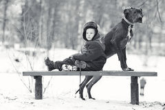 Little boy with  big black dog Stock Photos