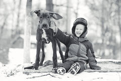 Little boy with  big black dog Stock Images