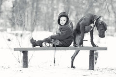 Little boy with  big black dog breed Stock Photography