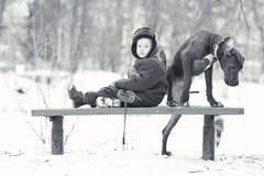 Little boy with  big black dog breed. Little boy with a big black dog breed Stock Photography